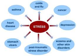 stress-chart