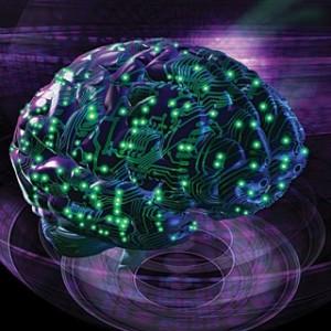 The Bipolar Brain